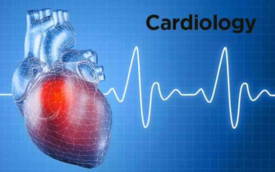 15 Fascinating Cardiology Fellowships